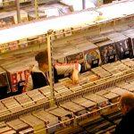 Schallplattenzentrale