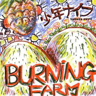 Shonen Knife - Burning Farm (K Records version, 1985)