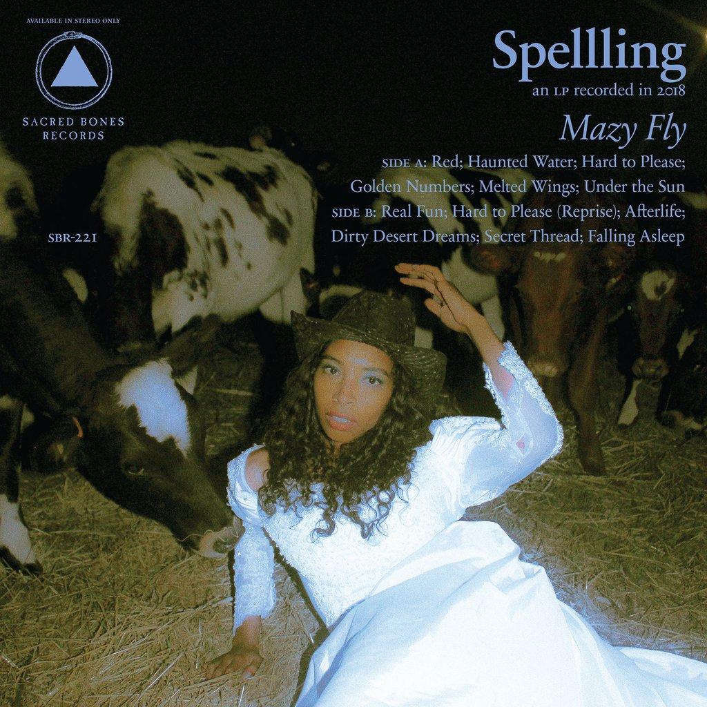 Spellling Mazy Fly